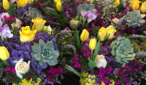 Kathy's Florist - Fort Lauderdale Florist